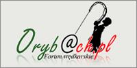 Wędkarstwo - Orybach.pl
